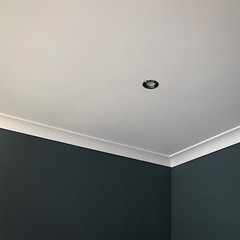 21/08/18 - Check that out! (ordinarynomore) Tags: coving painting number56 home