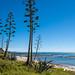 Mahia Peninsula, Northern Hawkes Bay