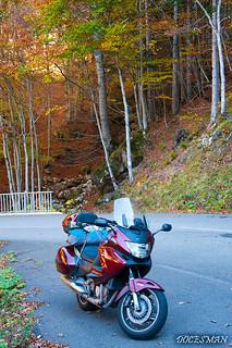 Pirineos otoño