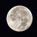 La luna del amanecer