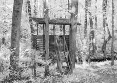 Tree House by the Stream IR (Neal3K) Tags: ir infraredcamera kolarivisionmodifiedcamera henrycountyga georgia bw blackandwhite