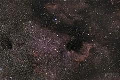 NGC7000, North America Nebula (SubOrbitalBen) Tags: qhy williamsoptics zwo telescope yyc youresa cygnus ioptron photoshop astrophotography asi071mc adobe deepsky alberta galaxy ngc hdr highwoodpass kananaskis kananaskiscountry skyguiderpro lightroom lr longexposure zenithstar explorebc canada camping canmore banff braggcreek nightphotography nasa nebula night mountains milkyway ngc7000 asi071mcpro asi astrometrydotnet:id=nova2754256 astrometrydotnet:status=solved