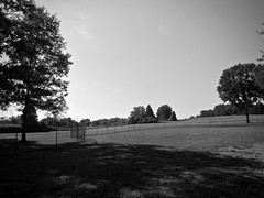 Light & Shadow (B&W) (neukomment) Tags: bw blackwhite parks michigan august 2018 summer dogs android