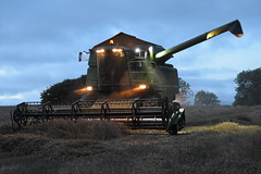John Deere 2264 Combine Harvester cutting Winter Wheat (Shane Casey CK25) Tags: john deere 2264 combine harvester cutting winter wheat jd green ballyhooly grain harvest grain2018 grain18 harvest2018 harvest18 corn2018 corn crop tillage crops cereal cereals golden straw dust chaff county cork ireland irish farm farmer farming agri agriculture contractor field ground soil earth work working horse power horsepower hp pull pulling cut knife blade blades machine machinery collect collecting mähdrescher cosechadora moissonneusebatteuse kombajny zbożowe kombajn maaidorser mietitrebbia nikon d7200 night nighttime time
