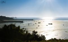 Sunrise (Sohmi ︎) Tags: sunrise paysage bretagne brittany landscape cancale ciel sky sun soleil plage sable sea sand port lowtide