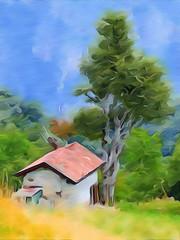 Ris36+W+Bonsai+IMG_4755Pix1072x1430Ris36 (Enchanted Loom) Tags: painterly pianiresinelli
