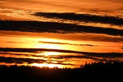 Sunset (TimoOK) Tags: vaasa finland suomi söderfjärden syksy autumn fall sunset auringonlasku