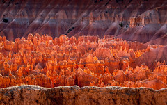 Walled Hoodoo Garden (byron bauer) Tags: byronbauer red rock wall hoodoo formations painterly texture topaz simplify erosion sedimentary strata majestic color landscape amphitheater nationalpark bryce canyon elitegalleryaoi bestcapturesaoi