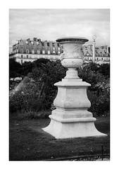 (Super)Cup (Thomas Listl) Tags: thomaslistl blackandwhite noiretblanc biancoenegro grey paris france building statue figure tuilerie jardindestuileries stone grass sky