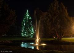 Suvised jõulud (BlizzardFoto) Tags: suvi summer jõulud christmas purskkaev fountain jõulukuusk christmastree sürgavere