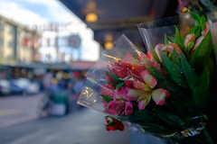 Flowers for my friend (dan-gutierrez) Tags: roadtrip streetphotography fujifilm x100t seattle northwest