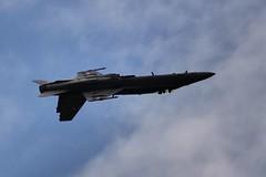 scottish air show 2018 (anna n rob) Tags: scottishairshow scotland ayr ayrshire planes aeroplanes acrobatic smoke display f18