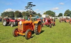 Fordon and International Tractors heading for the Parade Ring at the Grand Henham Steam Rally, 15th. September 2018. (Crewcastrian) Tags: henham transport tractors preservation fordson international grandhenhamsteamrally