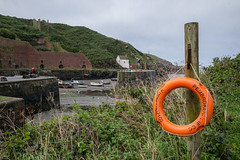 L2018_3546 - Porthgain Harbour - Pembrokeshire - Wales (www.jhluxton.com - John H. Luxton Photography) Tags: 2018 cymru industrialarchaeology industrialhistory johnhluxtonphotography leica leicam leicamtyp262 pembrokeshire pembrokeshirecoastnationalpark porthgain sirbenfro stdavids uk wales coast harbour wwwjhluxtoncom porthgainharbour