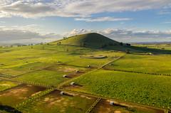 Home (Mark McLeod 80) Tags: 2018 ballarat clunes dji kingston markmcleodphotography mavic2pro smeaton vic aerial canola landscape victoria australia