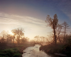Welcome day by the river Bobrza (fotoswietokrzyskie) Tags: fog spring water nature river poland film analog landscapes dawn medium format kodak ektar 100 bobrza mamiyarz67 6x7 landscape tree mist sky sunrise sekor65mm grass