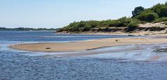 Volga beach / Берег Волги (dmilokt) Tags: природа nature пейзаж landscape dmilokt небо sky река river вода water голубой blue песок берег sand пляж beach