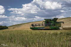 JD MORA L (Adam Masár) Tags: summer outdoor working first entry field colza agriculture farming farm fields raps combine landscape country sky mountain road grass johndeere power