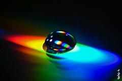 drops of water... (N.Batkhurel) Tags: drop cd closeup mongolia macro ngc nikon nikond5200 nikkor 105mm