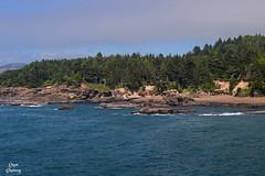 DSC_2455 ~ Boiler Bay OR (stephanie.ovdiyenko) Tags: boilerbay oregon oregoncoast pacificcoast pacificnorthwest ocean pacificocean coastline coast waves rocks shoreline