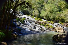 Salto Piedras Blancas (pepelara56) Tags: salto cascada arroyo selva