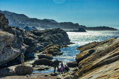 NorCal Travels 2018-18 (Maggie Houtz) Tags: norcal pointlobos