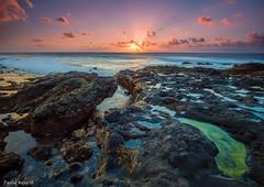 Agaete - Gran Canaria (David Hdez. ) Tags: mar océano playa sea ocean beach puestadesol sunset atardecer agaete grancanaria canarias islascanarias canaryisland olympusomdem5markii