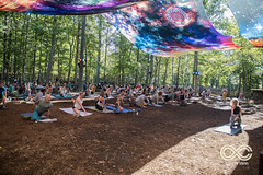 08-24-18_DPV_2959_Lockn_Yoga_by_Dave_Vann (locknfestival) Tags: garciasforest garcias forest