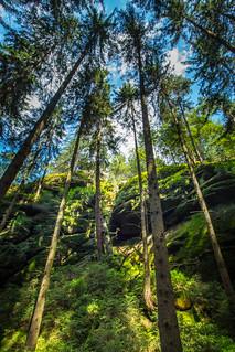 Schrammsteine-Sächsische Schweiz
