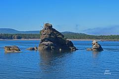 DSC_2306 ~ Nehalem Bay (stephanie.ovdiyenko) Tags: nehalembay pacificcoast pacificnorthwest rocks shore bay