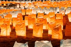 Joyful Memory (Ballet Lausanne) Tags: tokyo daiba night d800 お台場