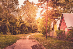 QUIET LIFE (Jeton Bajrami) Tags: quiet life switzerland house sun summer little road capaign nature swiss hipster hype sony a7ii alpha perfect art 2018