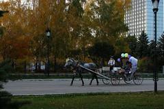 Как в старину (Aleksey Guskov) Tags: россия ульяновск лошадь повозка бричка карета город осень russia ulyanovsk city autumn horse britzka