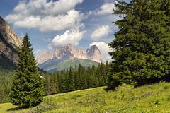 Sassolungo dalla Val Contrin (cesco.pb) Tags: valdifassa valcontrin sassolungo dolomiten dolomiti dolomites alps alpi trentino italia italy canon canoneos60d tamronsp1750mmf28xrdiiivcld montagna mountains