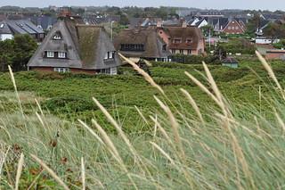 Derrière la dune, Kampen, Sylt, Nordfriesland, Schleswig-Holstein, Allemagne.
