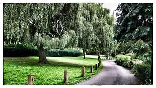 Balade dans un jardin Anglais