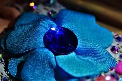 Lycra Blue Flower (Nacho RV) Tags: macrofriday azul blue