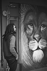 Iron Lion Zion (Paul J's) Tags: newplymouth taranaki lion man mural streetart graffiti broughamst bobmarley ironlionzion