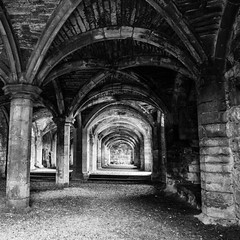 Lanecost Priory Crypt (Helmuth of Boskone) Tags: cumbria englishheritage lanercostpriory september autumn crypt brampton england unitedkingdom gb blackandwhite monochrome longexposure ceiling