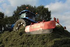 Silage  Grass Safe (excellentzebu1050) Tags: silage silagegrass grass harvest harvesting farm farmer fieldwork winterfood coth5 sunrays5