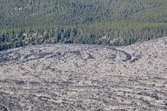 Overview of Obsidian Lava Flow (daveynin) Tags: oregon newberry peak caldera lava flow
