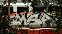 traingraffiti (wojofoto) Tags: msa treingraffiti trein traingraffiti train amsterdam graffiti streetart nederland netherland holland wojofoto wolfgangjosten