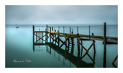 To Infinity And Beyond (RonnieLMills 5 Million Views. Thank You All :)) Tags: kinnegar jetty wooden pier holywood county down northern ireland early morning high tide belfast lough mist obscure long exposure ronnielmills