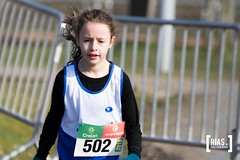 """2018_Nationale_veldloop_Rias.Photography21 • <a style=""""font-size:0.8em;"""" href=""""http://www.flickr.com/photos/164301253@N02/44139432214/"""" target=""""_blank"""">View on Flickr</a>"""