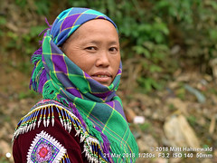 2018-03d Northeast Vietnam (71) (Matt Hahnewald) Tags: matthahnewaldphotography facingtheworld people character head face eyes mouth goldtooth expression lookingcamera smile story tribal attire embroidery clothing garment headwear headscarf headwrap consent dignity concept humanity living travel culture tradition affluence anthropology ethnic minority hilltribe rural traditional cultural wednesday market village sincheng laocai northern vietnam asia asian vietnamese hmong individual oneperson female middleaged mature woman photo physiognomy nikond3100 primelens nikkorafs50mmf18g 50mm 4x3 horizontal street portrait closeup headshot twothirdview sidewaysglance outdoor color posing authentic smiling clarity