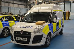 BV13 CHG (S11 AUN) Tags: norfolk police fiat doblo cell cage panda patrol car area irv incident response vehicle 999 emergency bv13vhg