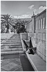 Fotografía Callejera (Street Photography) (Samy Collazo) Tags: mc donalds 101 dalmatians toy camera mcdonalds101dalmatianstoycamera toycameras camarasdejuguete camarasplasticas plasticcameras aristaedu100 sanjuan oldsanjuan viejosanjuan puertorico