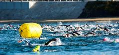 Triskel Race-02092018-516-8.jpg (gjack56) Tags: 15000000 15066000 bretagne continentsetpays europe fr fra france iptcnewscodes iptcsubjects morbihan sport triathlon course guidel guidelplage