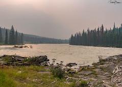 Smokey Rookies (since 1960) Tags: kanada canada alberta nationalpark rockymountains berge wald forest river flus fujifilmxt1 rauch smoke feuer fire
