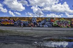 PaintLouis2018_SAF2159-2 (sara97) Tags: copyright©2018saraannefinke missouri paintlouis paintlouis2018 photobysaraannefinke saintlouis streetart wallmurals publicart